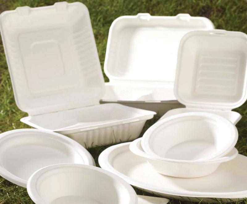 Biodegradable Food Packaging Ban Teck Han